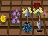 "Game""Bloomin Gardens"""