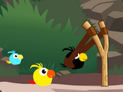 "Game ""Cute Birds Forest"""