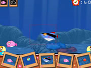"Game ""Dora Fish Photography"""