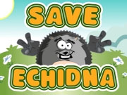 "Game""Save Echidna"""