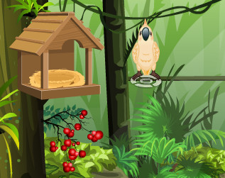 "Game""My Sweet Parrot"""