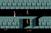 "Game ""Prince of Persia"""